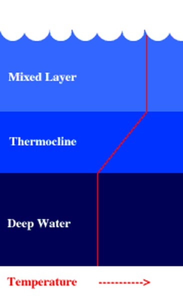 Temp Ocean Zones Diagram Diy Wiring Diagrams